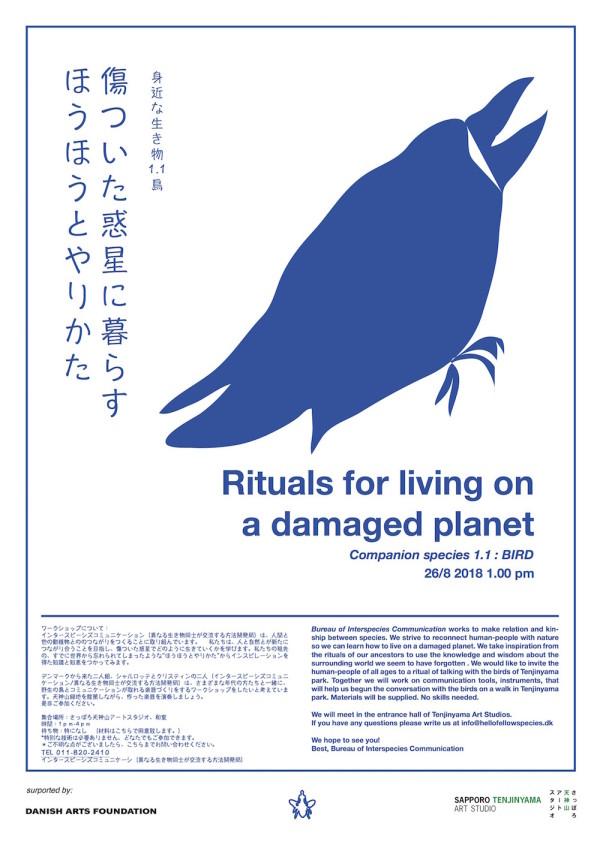 plakat færdig ægte blå JP